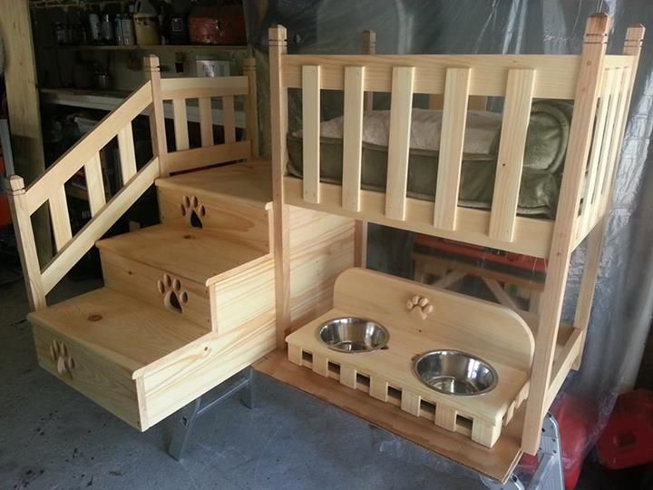 Dog condo woodworking inspirations for Pet bunk bed gallery