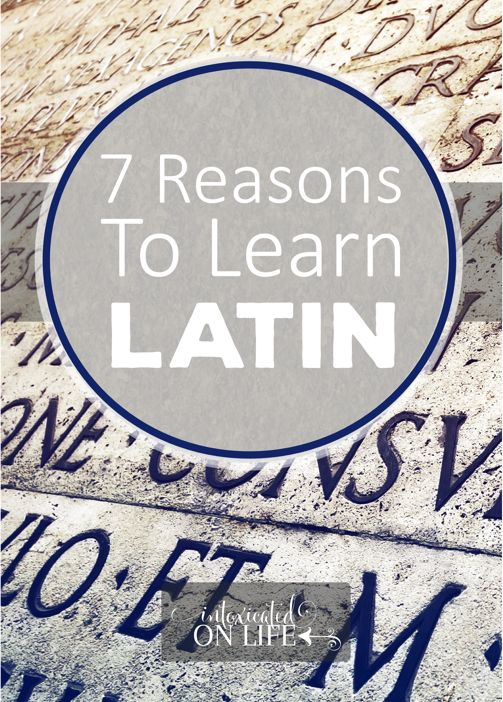 7 Reasons I'm learning Latin (and teaching my kids too!)