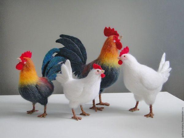 Семейство петухов