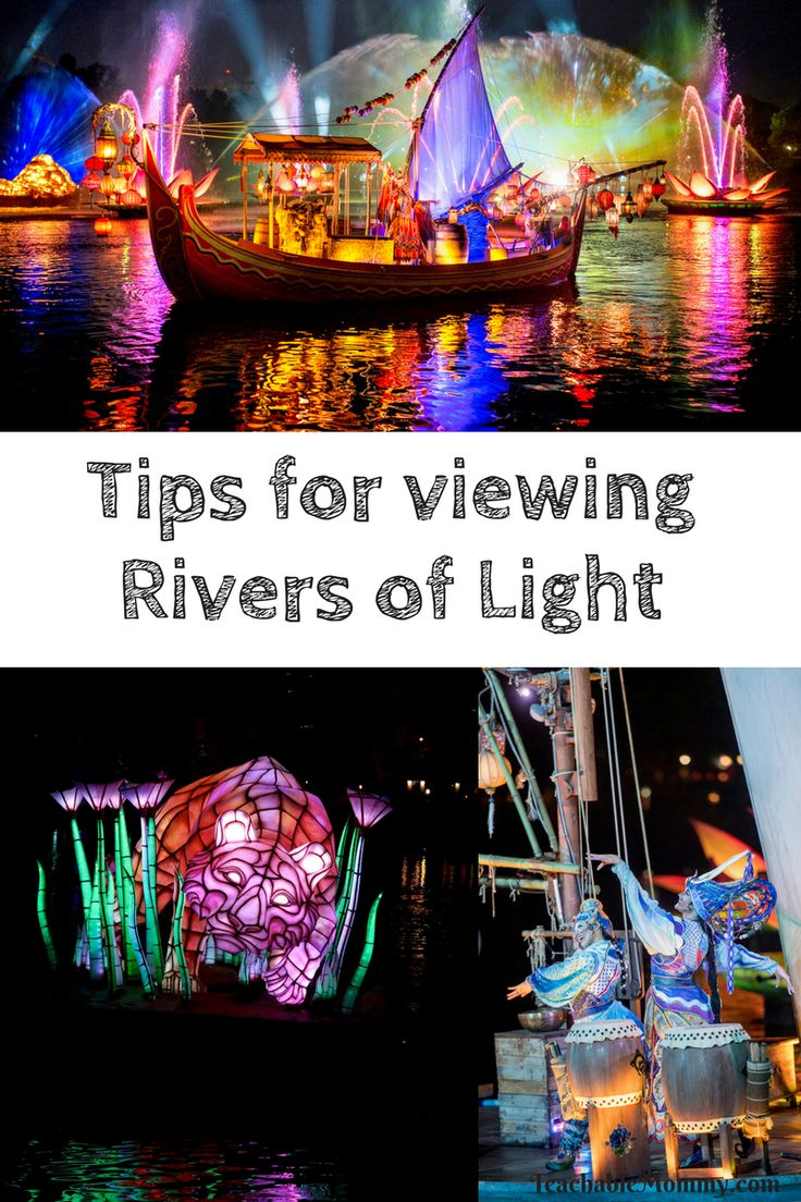 Disney's Animal Kingdom brand new Rivers of Light show is here! You do not want to miss it! I'm sharing tips for getting the best seat in the house & more!
