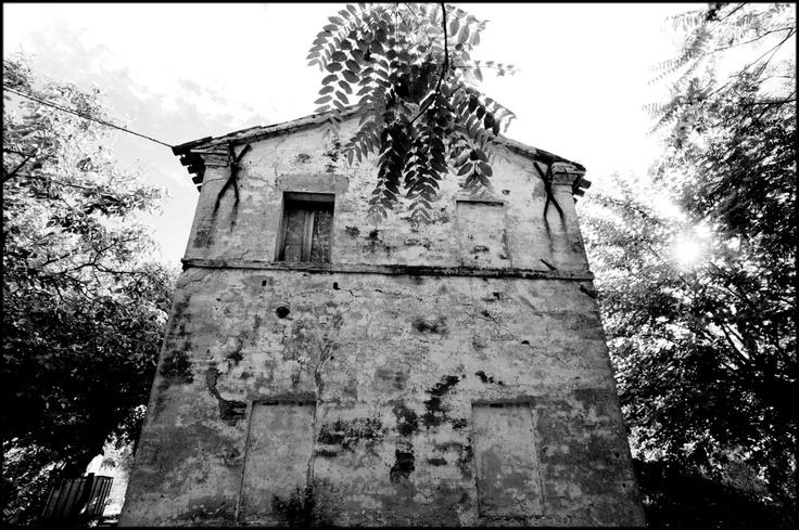nel giardino della casa di Canale, 2009-2010