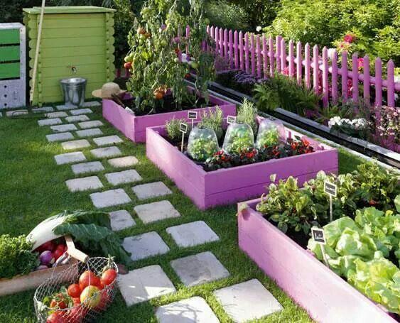 faire son potager en couleur dans le jardin projet travaux jardin pinterest fils. Black Bedroom Furniture Sets. Home Design Ideas