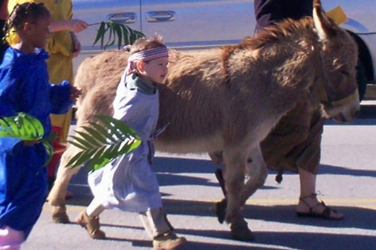 17 Best Images About Palm Sunday Crafts And Ideas On