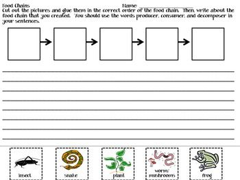 Students will cut and paste the organisms on the bottom of the page into a food chain.  Students will then write sentences about their food chain.  This is a great way to incorporate writing into Science!