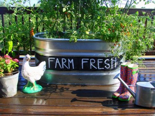 Garden in a horse trough fancied up with a bit of chalk paint and white paint for the letters (from Sugar Pie Farmhouse)