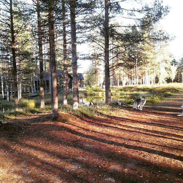 Kierikki, Yli-Ii, Finland