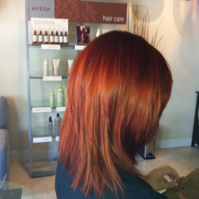 223 best images about aveda on pinterest - Voila institute of hair design kitchener ...