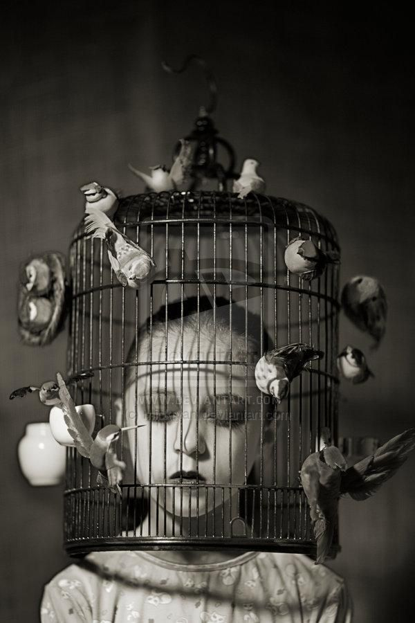 Stereotypes in cages