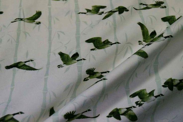 Ptx17 9924409-51 Tricot KNIPPIE goose ecru