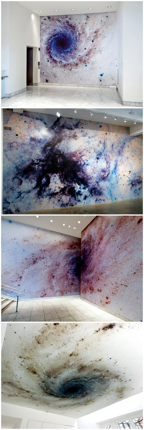 Mungo Thomson - Negative Space (2006)