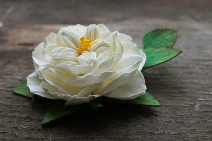 Cross stitch patterns: English rose
