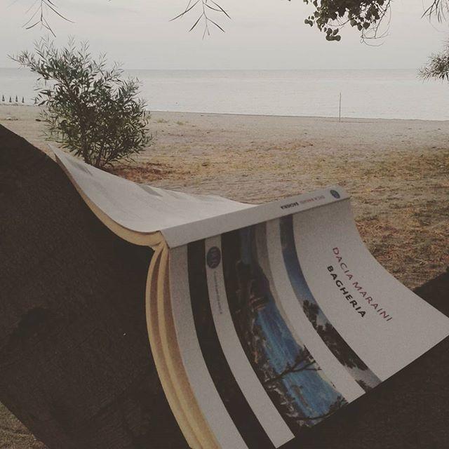 Ciao! Ho appena terminato #bagheria di #daciamaraini Con uno stile asciutto la scrittrice racconta un passato sofferto e dolce amaro pieno dei sapori dei profumi e delle contraddizioni della sua terra. Di gelsi fichi d'india e gelati della nobiltà siciliana e della sua decadenza di violenze e maschilismo di famiglie.. Una lettura perfetta per questo periodo  #vscoreads #vacation #italiainlettura #sicilia #bookaholic #bookporn #igreads #booklovers #bibliophile #bookoftheday #leggere #lettura #instabook #instalibro #bookstagram #chileggeseduce #bellochilegge #ioleggo #continuiamoaleggere #igerssicilia #ig_libri #solocosebelle #instagood #mare #picofday #photooftheday #instalike by lara13to