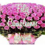 Hermosas Imágenes De Rosas De Cumpleaños Para Una Sobrina