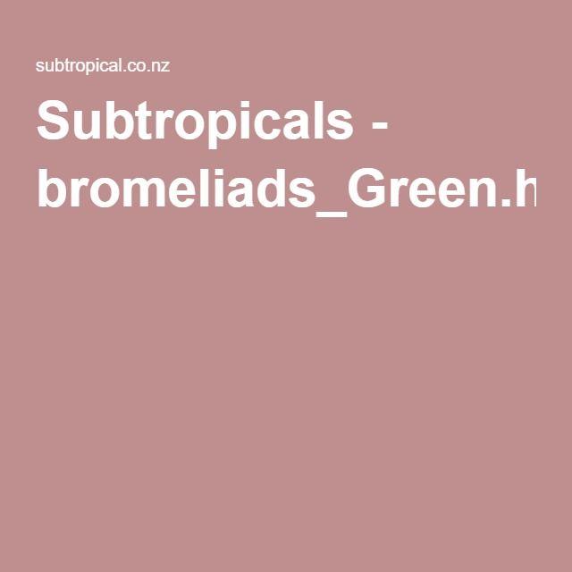 Subtropicals - bromeliads_Green.html