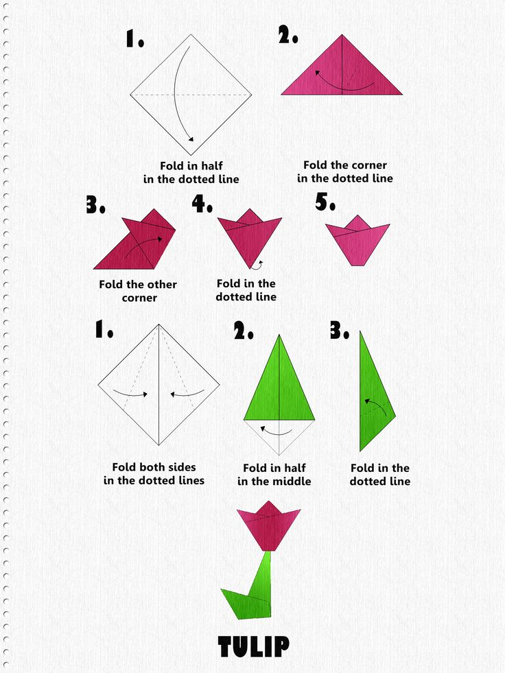 My sister-in-law lived with us for many years and she was obsessed with Origami. We used to find cute little things that she had made all over the house. For birthdays and other holidays, we always purchased Origami paper for her. Origami is the Japanese word for paper folding. ORI means to fold, KAMI means …