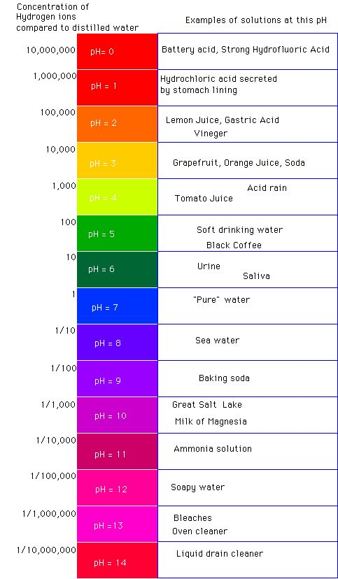 100 Best Images About Ph Scale On Pinterest