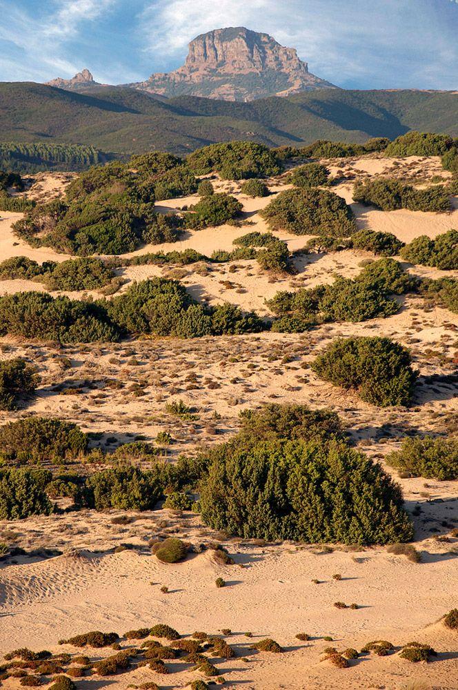 Dune di Piscinas, Arbus, Sardegna