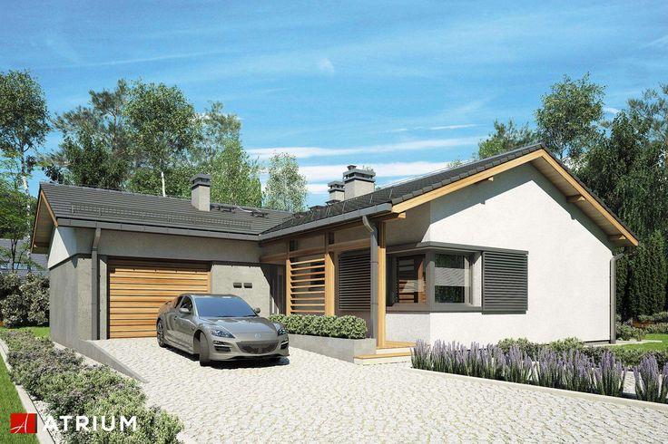 Projekty domów - Projekt domu parterowego KOLIBER - wizualizacja 1