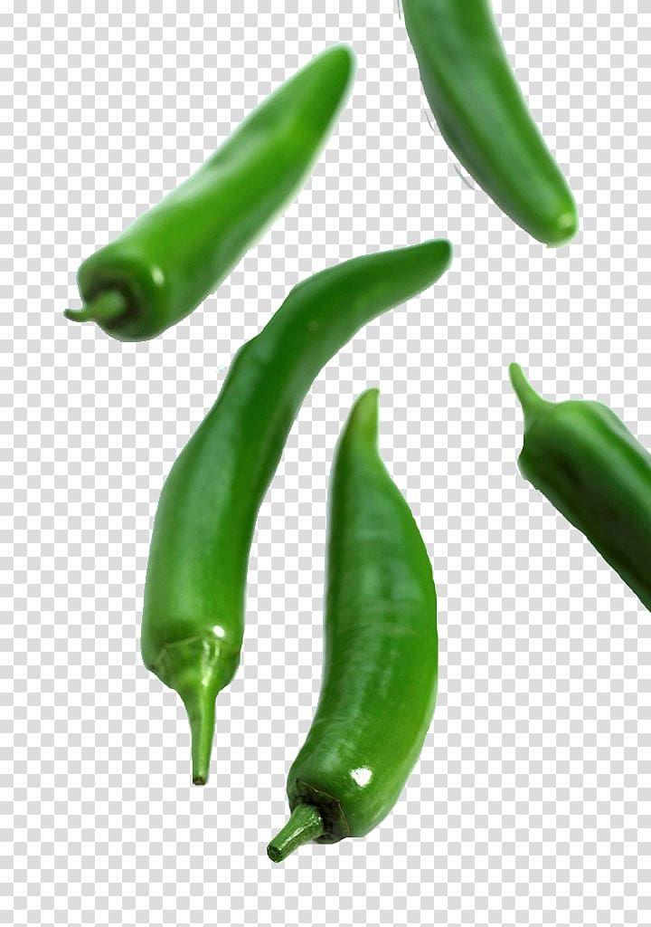 Serrano Pepper Birds Eye Chili Jalapexf1o Bell Pepper Cayenne Pepper Vegetable Pepper Transparent Backgro Birds Eye Chili Stuffed Peppers Stuffed Bell Peppers