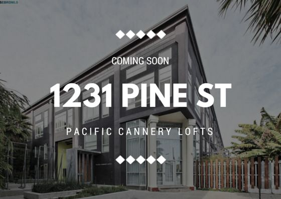 COMING SOON 1231 PINE ST