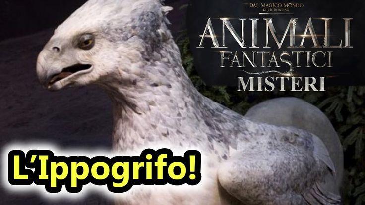 Animali Fantastici Misteri - L'attacco dell'IPPOGRIFO! - Android - (Salv...