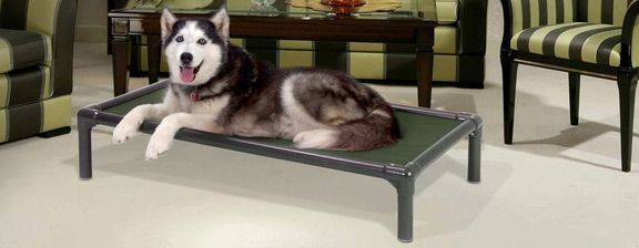 Great beds for our Husky guests! Donate a bed today: http://kuranda.com/donate/3705