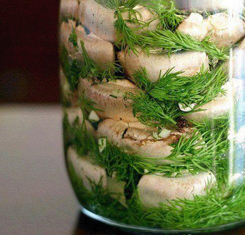 Рецепт Малосольные шампиньоны на скорую руку - пошаговый рецепт приготовления с фото | Закрутки на зиму | La-Minute - кулинарные рецепты