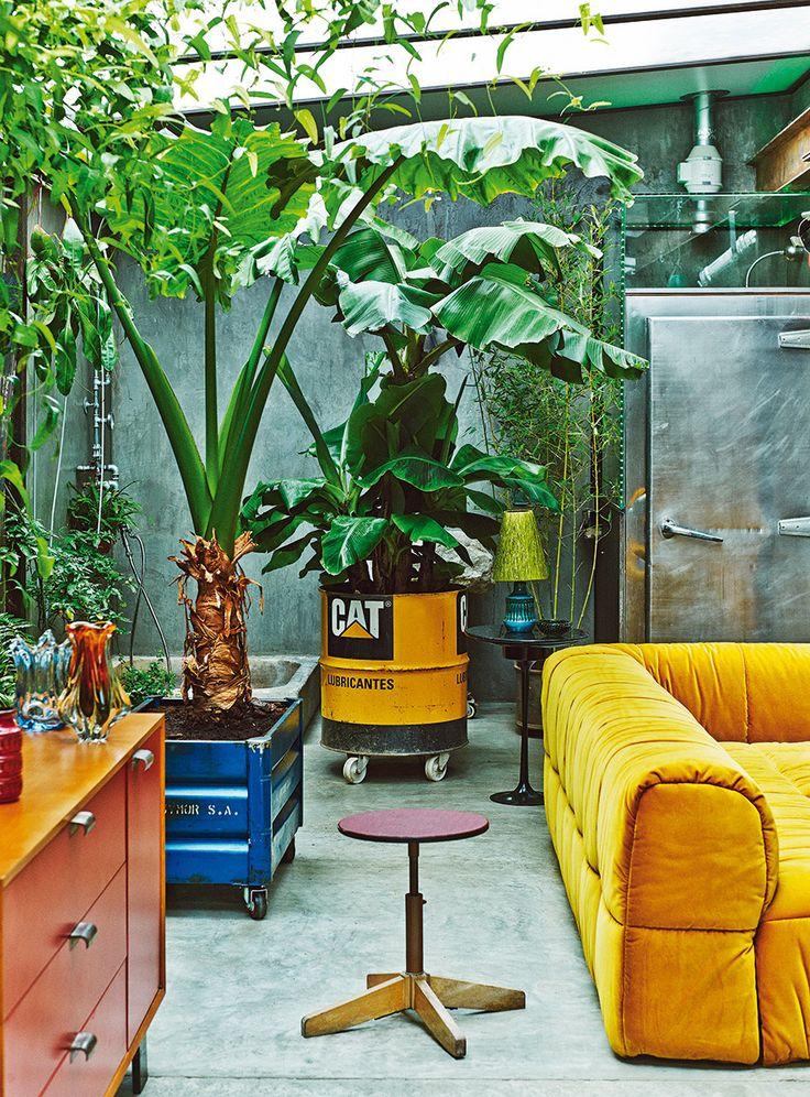 La casa del actor Gustavo Salmerón en Madrid  Plantas de bambú y alocasias, muchas sobre ruedas, invaden la casa. Abajo, panorámica del salón con el comedor y la cocina.  http://www.revistaad.es/decoracion/casas-ad/galerias/la-casa-del-actor-gustavo-salmeron-en-madrid/6999/image/578831