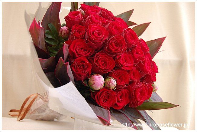 Rose bouquet red 赤い薔薇の花束
