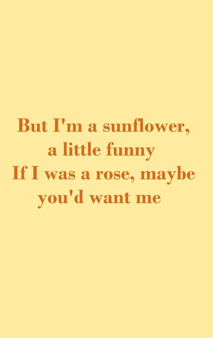 Sunflower Song Lyrics From The Movie Sierra Burgess Is A Loser Entertainment Song Lyrics Wallpaper Loser Quotes Song Lyric Quotes