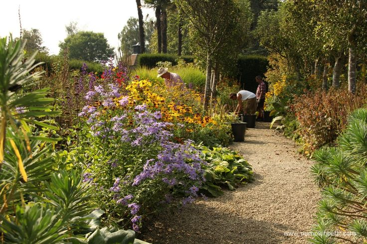 We're fortunate to benefit from so many beautiful, important and historic gardens being open for us to enjoy in Surrey, Hampshire and West Sussex.  We can be inspired by spectacular plant collections, see rare and exotic plants, enjoy beautiful landscapes and learn more about how amazing plants are, without travelling very far at all! One …