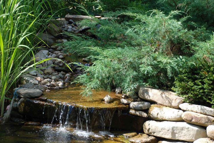 Ручей Частный сад в поселке Истра-кантри клуб Проект реализован 2007 году, автор Сабирова Диана