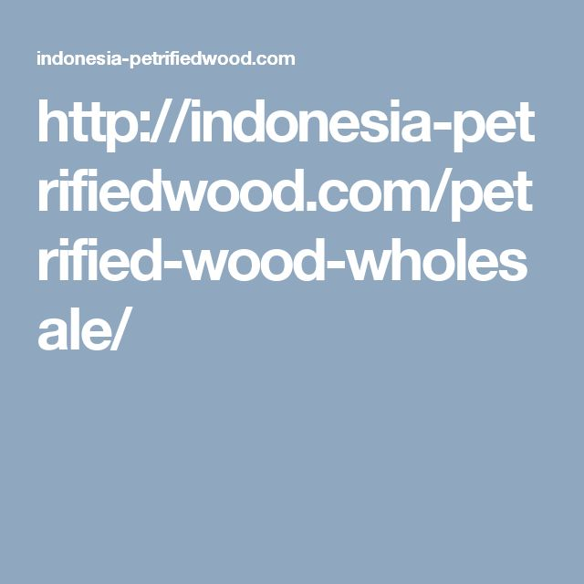 http://indonesia-petrifiedwood.com/petrified-wood-wholesale/