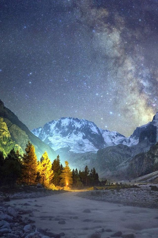 Night Mountains Shiny Sky View Pine Trees #iPhone #4s #wallpaper