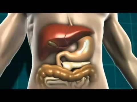 Diabetes - Causes, Symptoms, Diagnosis and Treatment | About Diabetes Guide #diabetes #diabetescures