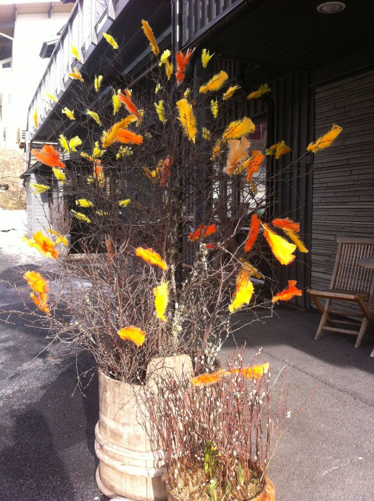 Easter, feather trees