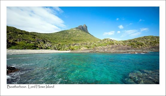 Situated on the east side of the island, Boat Harbour is a great half-day walk, traversing through our unique island forest.  http://www.lordhoweisland.info/