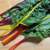 Notre nutritionniste-diététiste vous propose 5 atouts de la bette à carde
