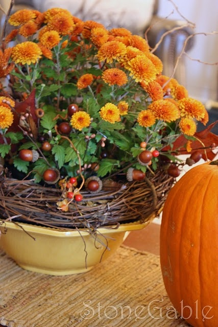 Mums inside grapevine wreath inside vintage bowl...sweet centerpiece for fall.