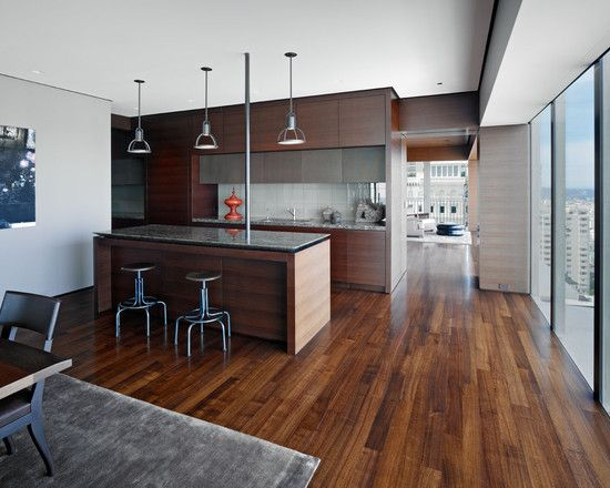 Wood Floor Kitchen Dark Cabinets Design, Pictures, Remodel, Decor and Ideas - page 7