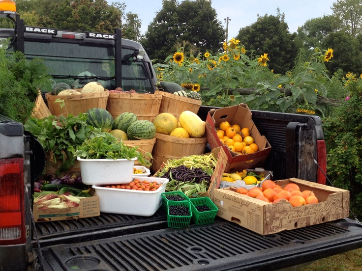 Fresh food is the best food! From the gardens to the table.