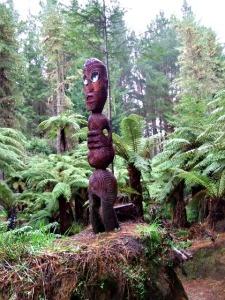 A secret Rotorua Walk - A Ponga Track Carving