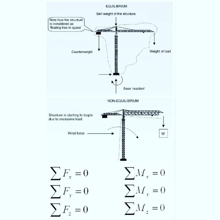 The 25 best body diagram ideas on pinterest human body diagram of equilibrium are one of the most important philosophies for engineering this allows a component or structure to be analysed using a free body diagram ccuart Choice Image