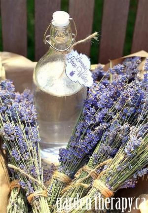 *Lavender Linen Water - 4C. of distilled water, 1/4C. witch hazel and  25 drops of lavender essential oil.  This lightly-scented lavender linen water is a must for the laundry room. Use it to fill up your iron to freshen while pressing. Pour it into a spray bottle and mist linens fresh from the wash or those that have been stored for a while. by jenna
