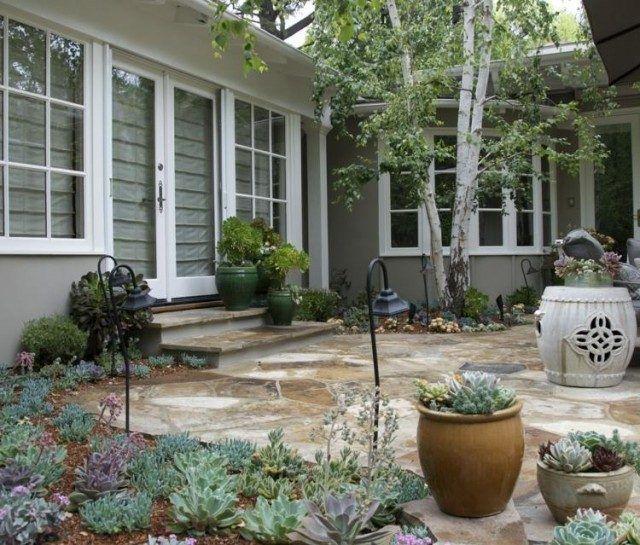 plantes-succulentes-pot-fleur-jardin-deco
