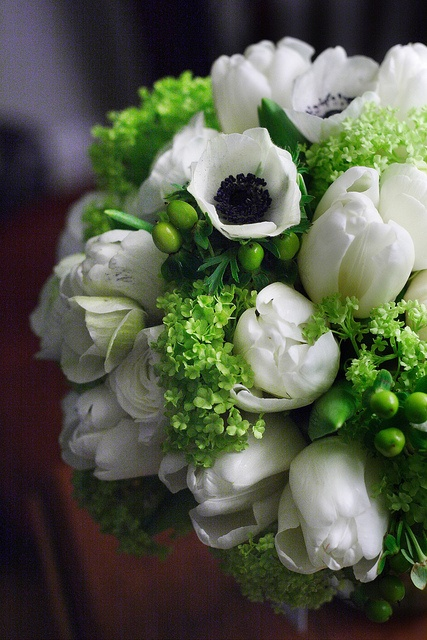 Beautiful bridal bouquet of white anemone wedding flowers for the bride on her wedding day  The white and green will pop with the blue!