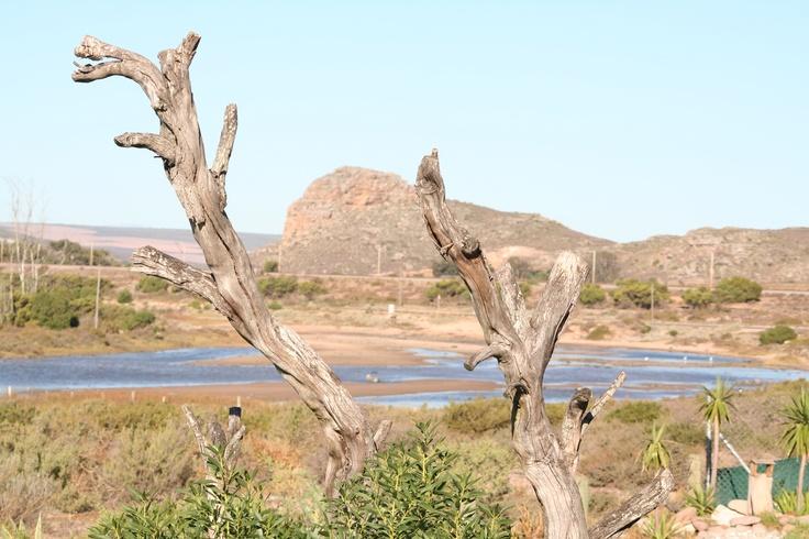 Elands Bay South Africa