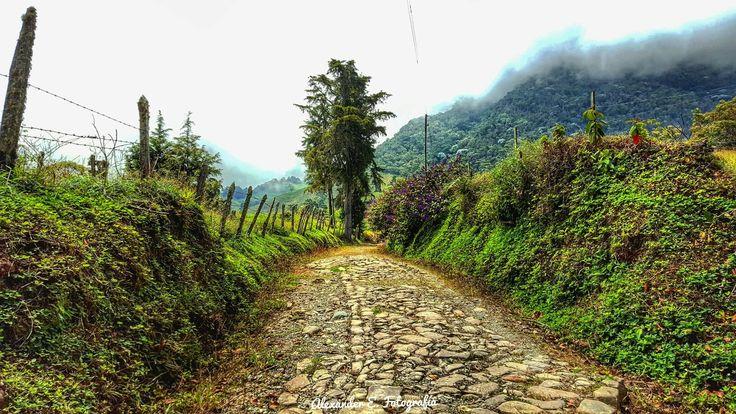 Rumbo a cerro bravo en fredonia antioquia Colombia suramericana rural camino de piedra montañas naturaleza