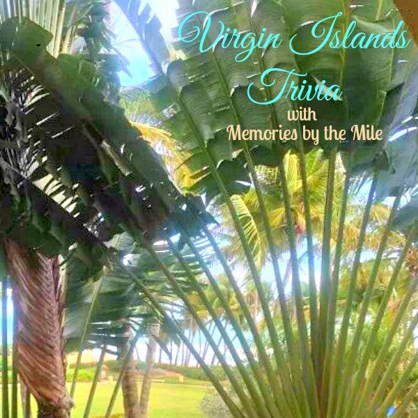 Homeschooling Us Virgin Islands