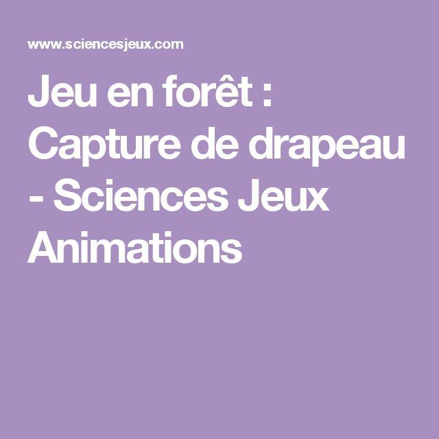 Jeu en forêt : Capture de drapeau - Sciences Jeux Animations